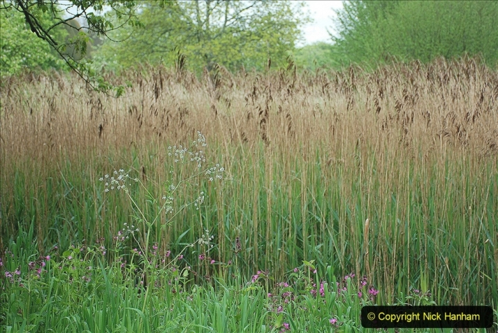 2021-05-18 Wiltshire Holiday Day 2. (41) Great Chalfield Mannor NT. 041