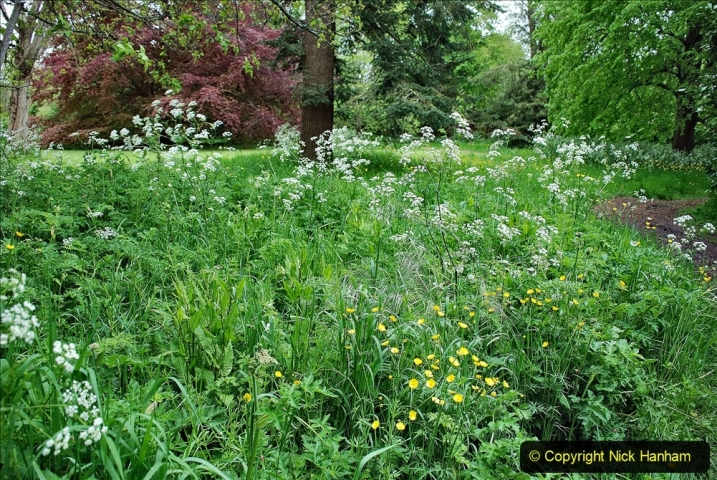 2021-05-20 Wiltshire Holiday Day 4. (40) The Courts Garden NT.