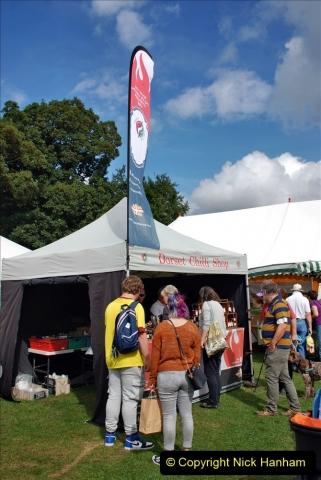 2021-09-11 Sturminster Newton Cheese Festival, Sturminster Newton, Dorset. (136) 136