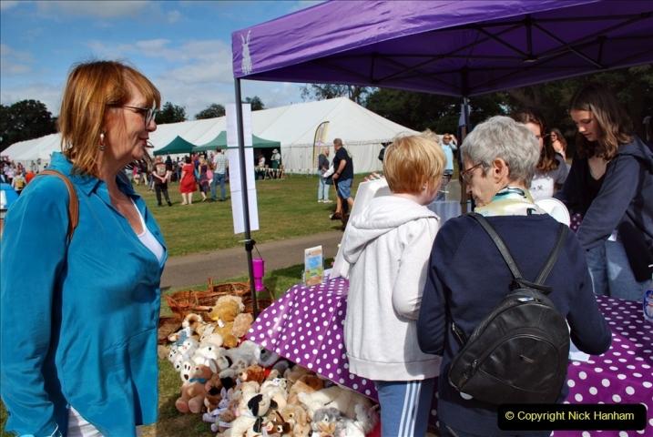 2021-09-11 Sturminster Newton Cheese Festival, Sturminster Newton, Dorset. (65) 065