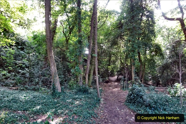 27 September 2020 Local Covid 19 Walk. (10) 010
