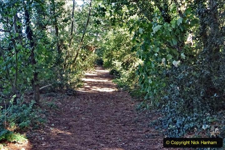 27 September 2020 Local Covid 19 Walk. (28) 028