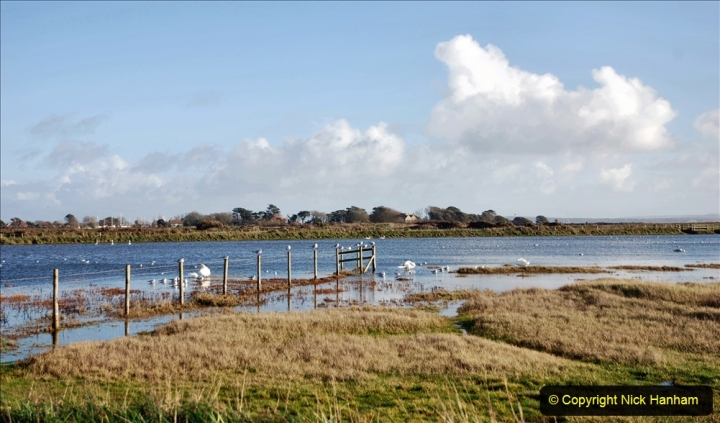 2020-12-15 Keyhaven, Hampshire along the costal to Bournemouth, Dorset. (3) 137