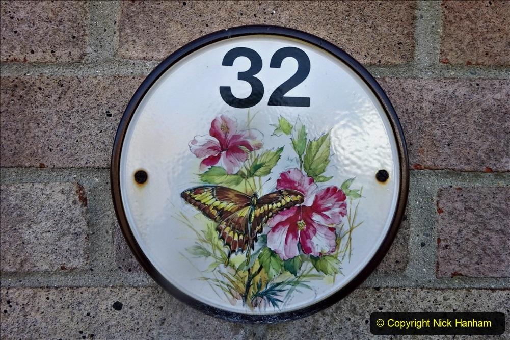 2021-04-04 A Poole garden in Spring. (1) 001