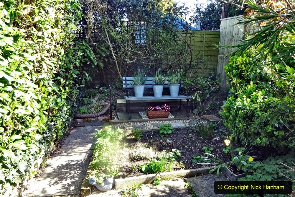 2021-04-04 A Poole garden in Spring. (10) 010