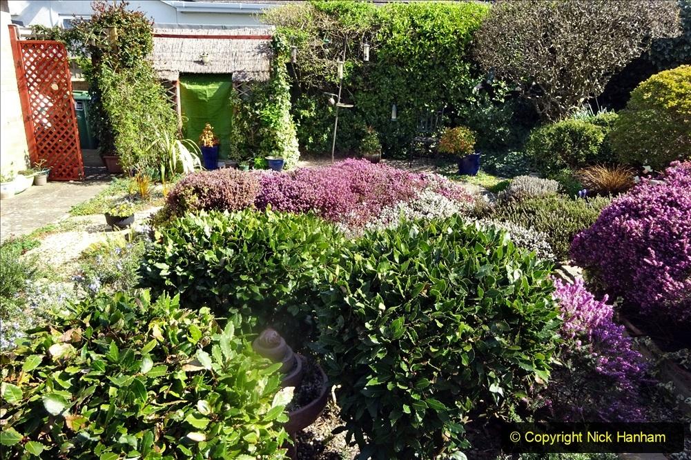 2021-04-04 A Poole garden in Spring. (32) 032