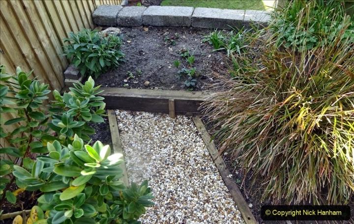 2021-04-04 A Poole garden in Spring. (14) 014