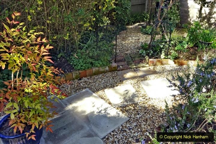 2021-04-04 A Poole garden in Spring. (28) 028