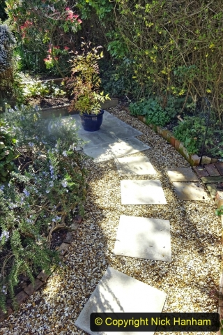 2021-04-04 A Poole garden in Spring. (33) 033