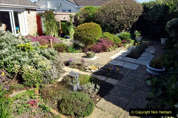 2021-04-04 A Poole garden in Spring. (8) 008