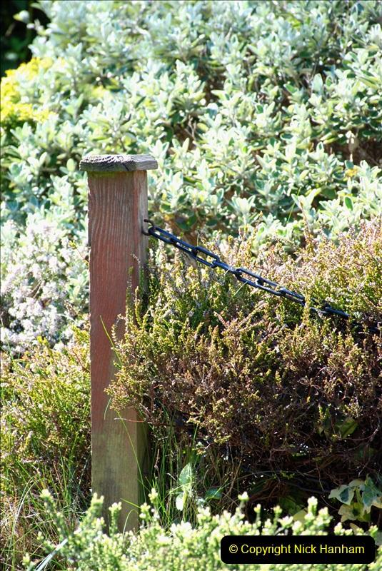 2019-04-21 A Poole Garden in Spring. (118)