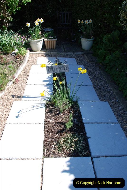 2019-04-21 A Poole Garden in Spring. (22)