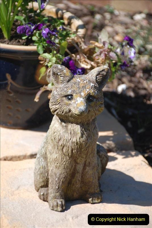 2019-04-21 A Poole Garden in Spring. (26)