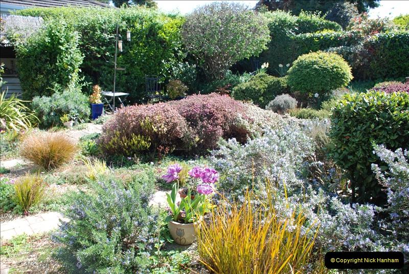 2019-04-21 A Poole Garden in Spring. (3)
