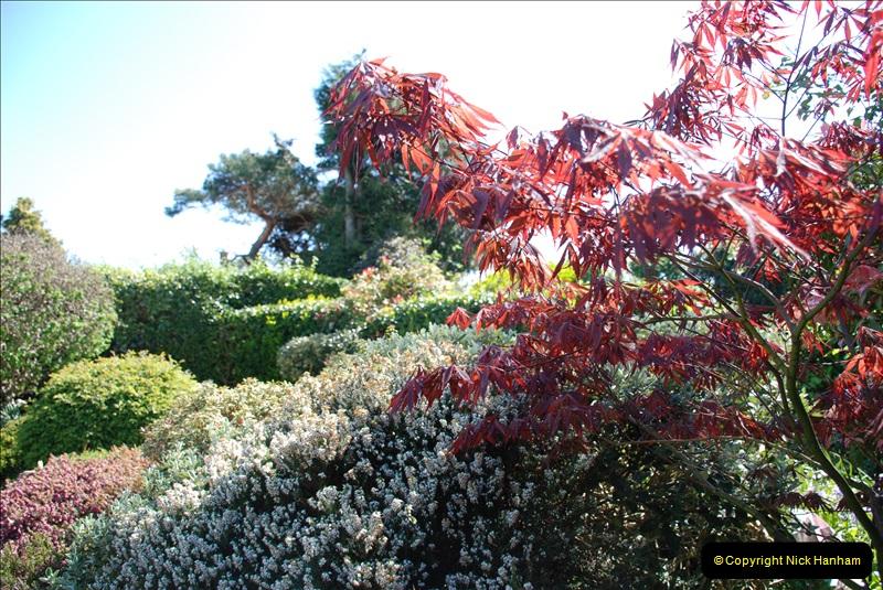 2019-04-21 A Poole Garden in Spring. (56)