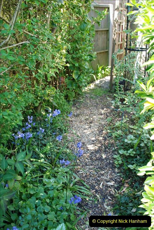 2019-04-21 A Poole Garden in Spring. (58)