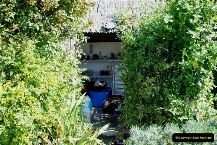 2019-04-21 A Poole Garden in Spring. (12)