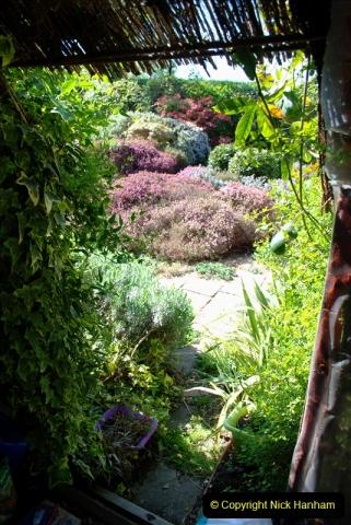 2019-04-21 A Poole Garden in Spring. (14)