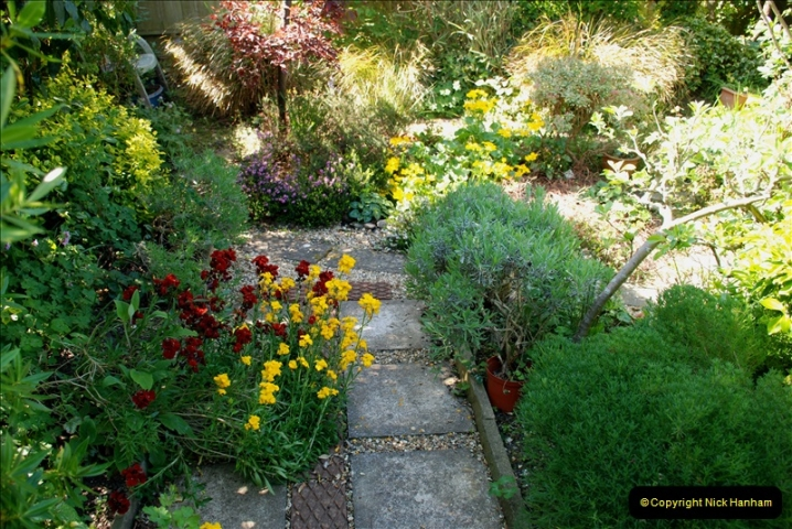 2019-04-21 A Poole Garden in Spring. (41)
