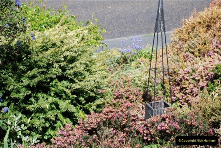 2019-04-21 A Poole Garden in Spring. (71)