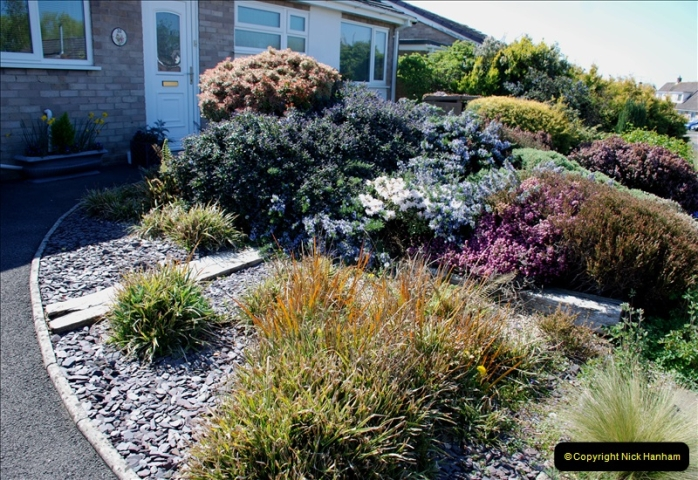 2019-04-21 A Poole Garden in Spring. (74)