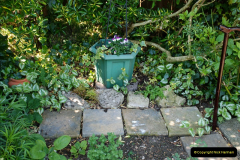 2019-04-21 A Poole Garden in Spring. (34)