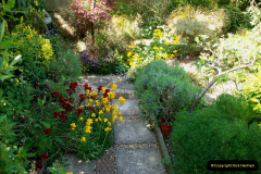 2019-04-21 A Poole Garden in Spring. (41)
