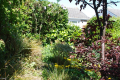 2019-04-21 A Poole Garden in Spring. (44)