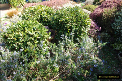 2019-04-21 A Poole Garden in Spring. (55)