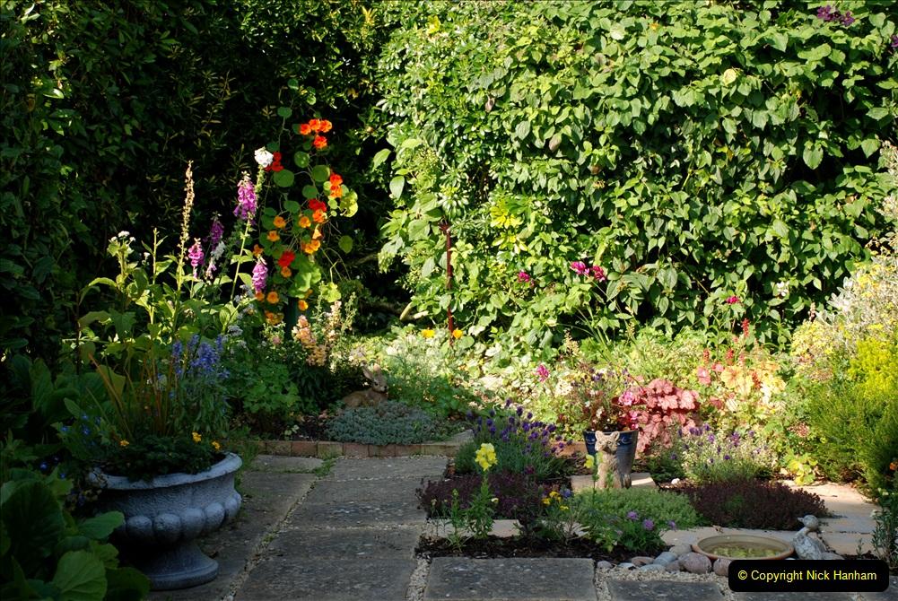 2019-07-11 A Poole Garden in Summer. (28) 028