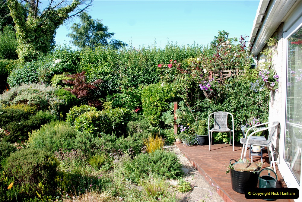 2019-07-11 A Poole Garden in Summer. (3) 003