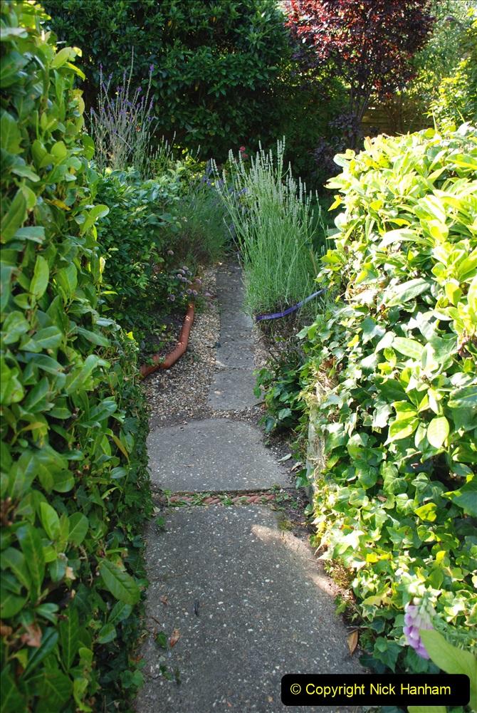 2019-07-11 A Poole Garden in Summer. (38) 038