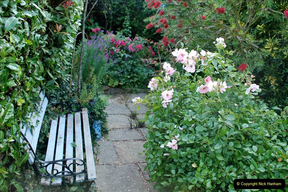 2019-07-11 A Poole Garden in Summer. (39) 039