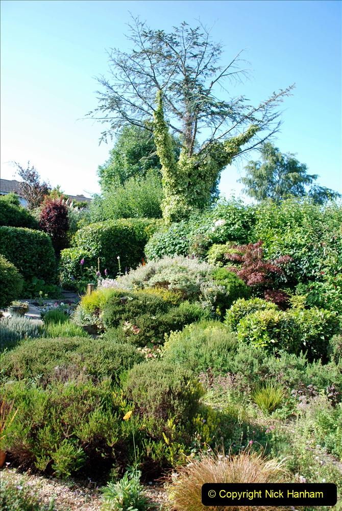 2019-07-11 A Poole Garden in Summer. (5) 005