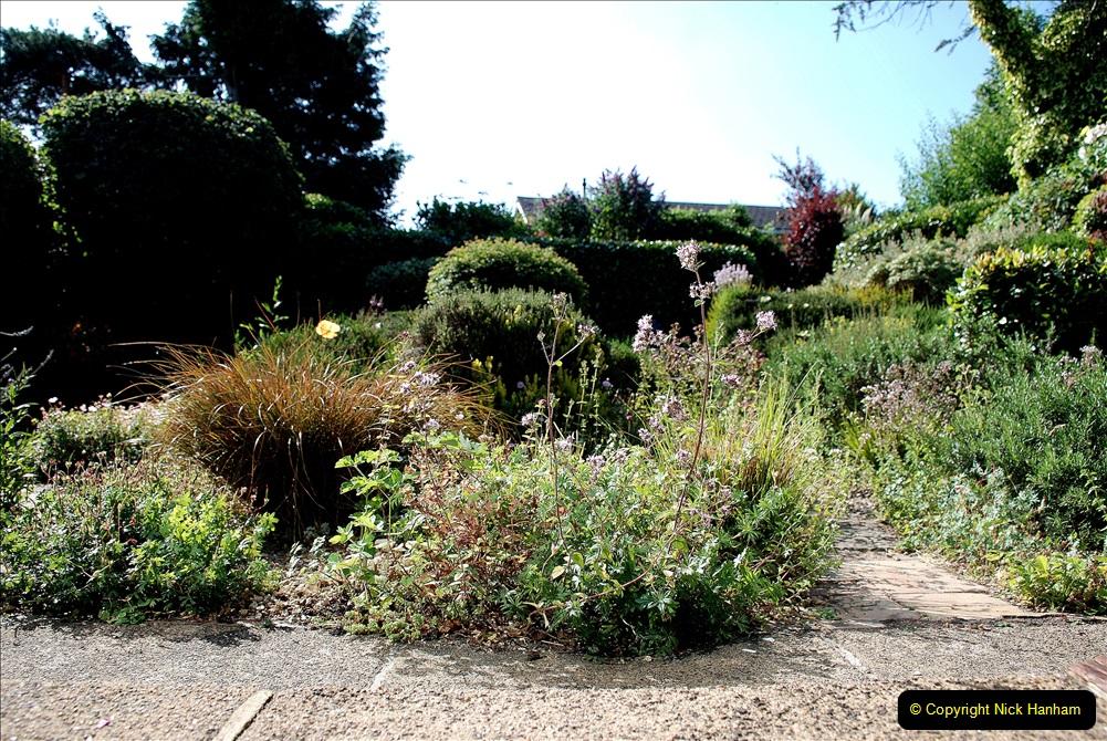 2019-07-11 A Poole Garden in Summer. (89) 089