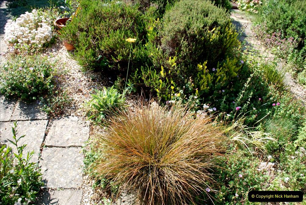 2019-07-11 A Poole Garden in Summer. (92) 092