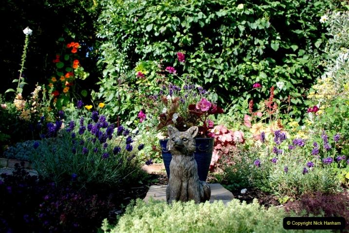 2019-07-11 A Poole Garden in Summer. (56) 056