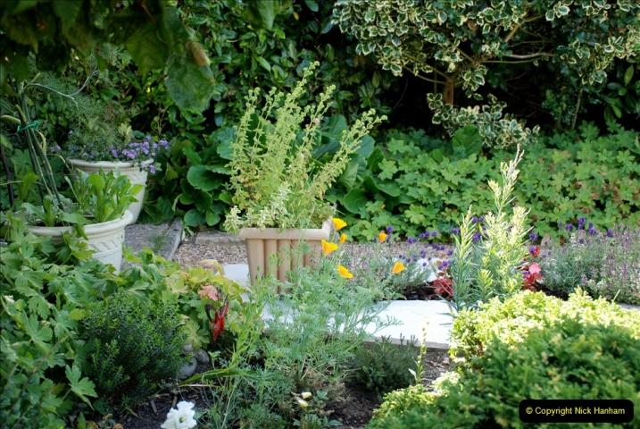 2019-07-11 A Poole Garden in Summer. (97) 097