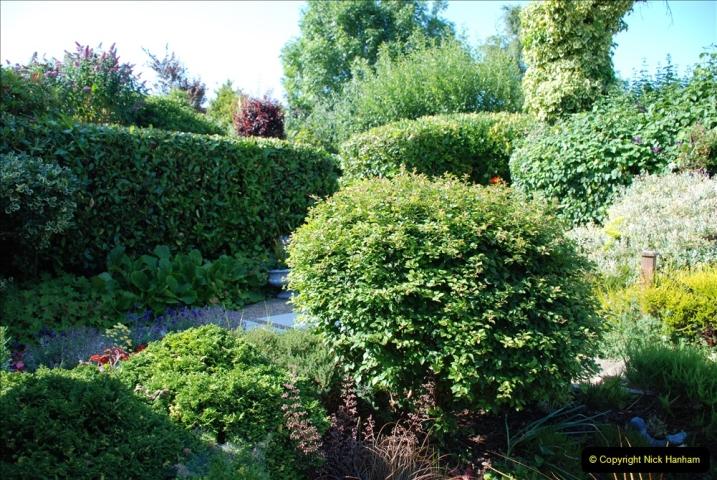 2019-07-11 A Poole Garden in Summer. (99) 099