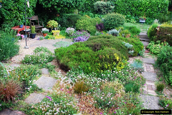 2016-06-16 A Poole Garden in early summer.  (66)66
