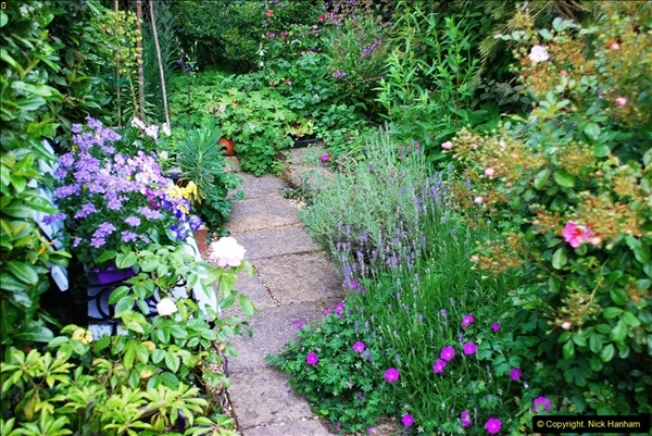 2016-06-16 A Poole Garden in early summer.  (42)42