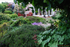 2016-06-16 A Poole Garden in early summer.  (60)60