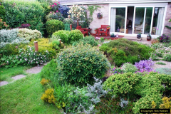 2016-06-16 A Poole Garden in early summer.  (61)61