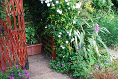 2016-06-16 A Poole Garden in early summer.  (68)68