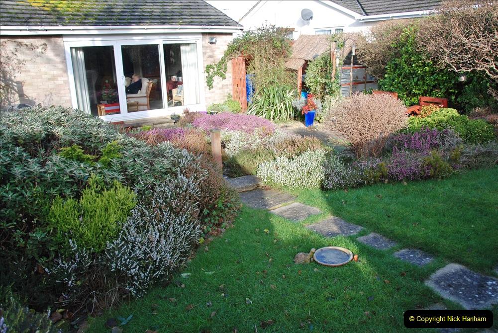 2018-01-03 A Poole Winter Garden. (1) 002