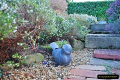 2018-01-03 A Poole Winter Garden. (46) 047