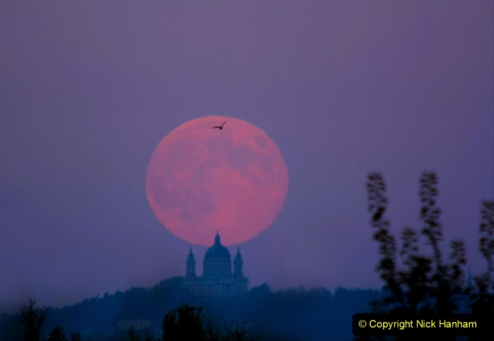Astronomy Pictures. (109) 109