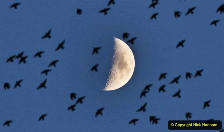 Astronomy. (159) Our Moon. 159