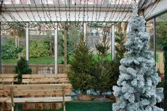 2019-12-09 Bournemouth Christmas Lights. (21) 021