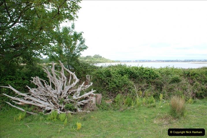 2019-05-26 Brownsea Island visit. (11) 11